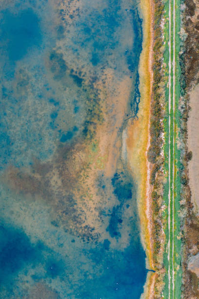 Salt fields and mineral lakes stock photo