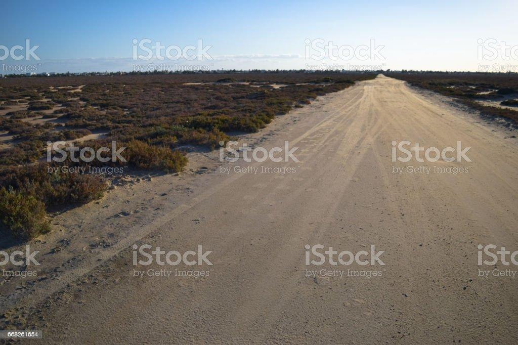 Salt lake and desert in Northern Africa. Djerba island. Tunisia foto stock royalty-free