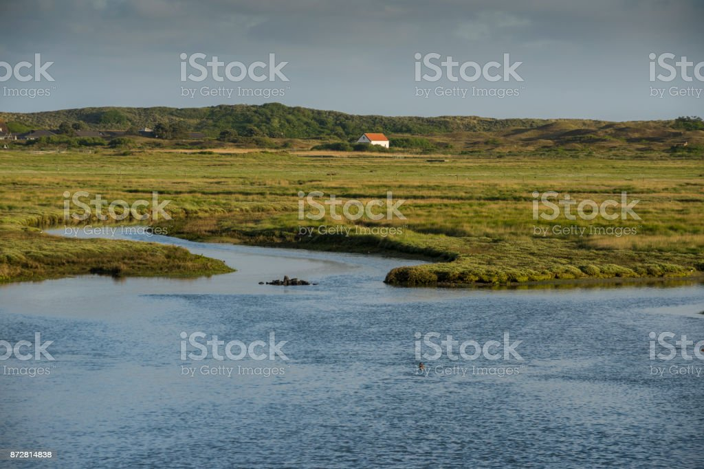 Salt marsh and shed at dunes in the morning light stock photo