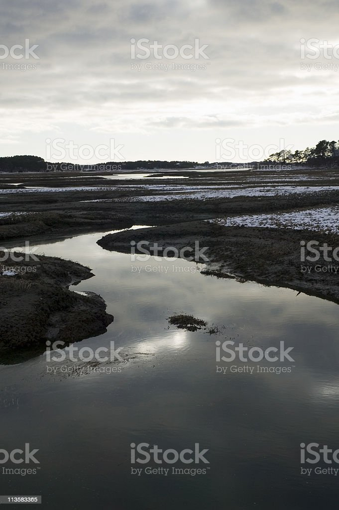 salt marsh at dusk royalty-free stock photo