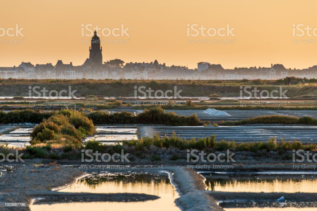 salt marsh at sunset stock photo