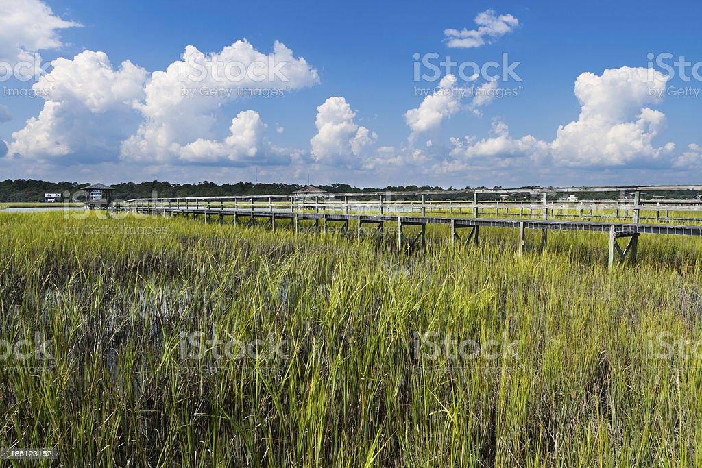Salt Marsh, Pawleys Island, South Carolina stock photo