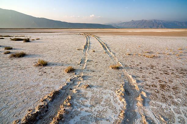Salt Marsh Tracks of joyriders crossing the dried out salt marshes. Evaporated water has created a thick salt crust in the desert of Cuatro Cienegas, north Mexico. Cuatrocienegas is a protected area and a national park. coahuila state stock pictures, royalty-free photos & images