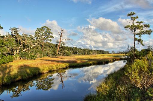 Salt marsh at Clam Creek on Jekyll Island, Georgia.
