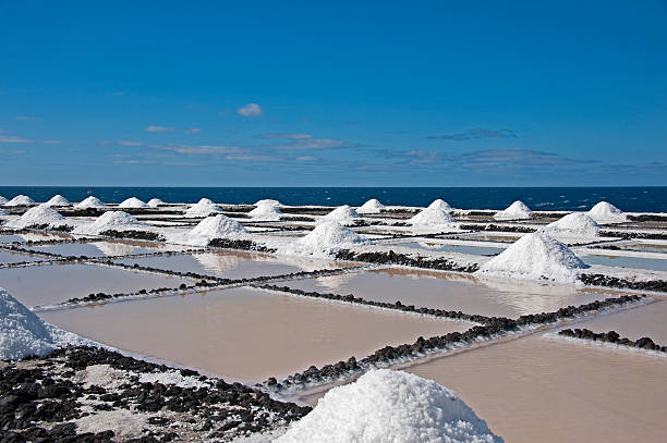 Salt Pans of Fuencaliente. Spain, Canary Islands, La Palma (the South).  Salt pans of Fuencaliente near the Atlantic evaporation stock pictures, royalty-free photos & images