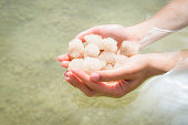Salt stones from the Dead Sea