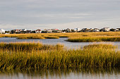 The sun is setting on a salt water marsh in Murrells Inlet South Carolina. The camera focus is on the marsh and not the houses that line the waters edge in the background.