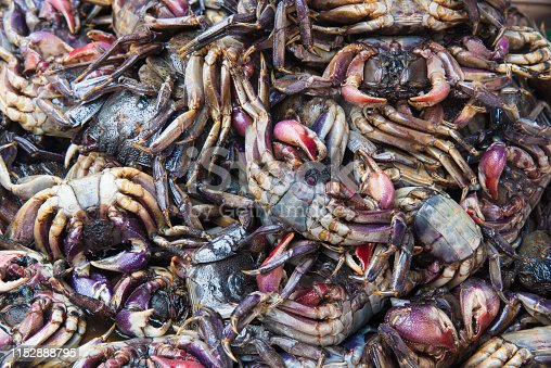 Crabs preserved in salty water at morning market, Bangkok Thailand.