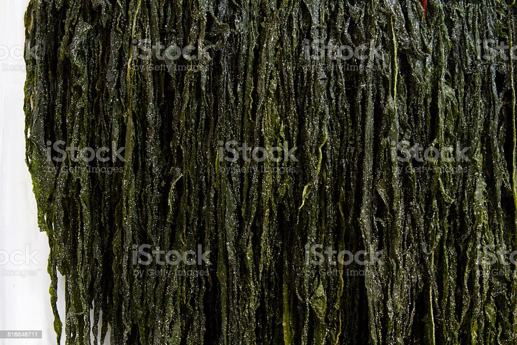 Salted Wakame stock photo