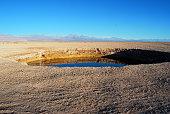 Ojos de Salar in Atacama Desert, Chile