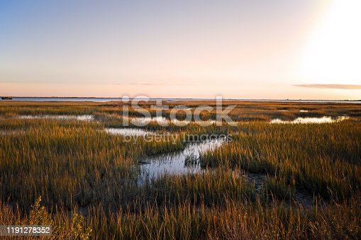 istock Saltmarsh on the Virginia coast in USA in the golden sun at sunset. 1191278352