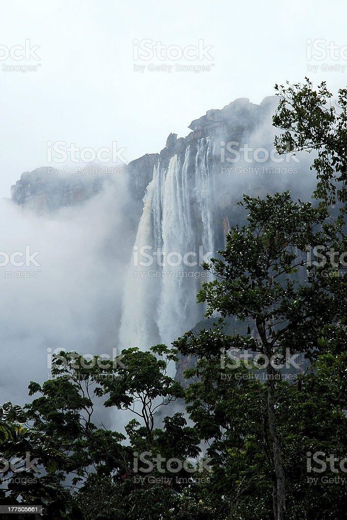Salto Angel- Angel Falls stock photo