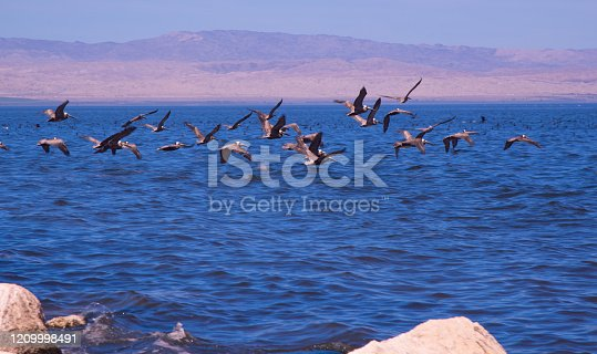 The Salton Sea in Southern California is the State's largest inland body of water.
