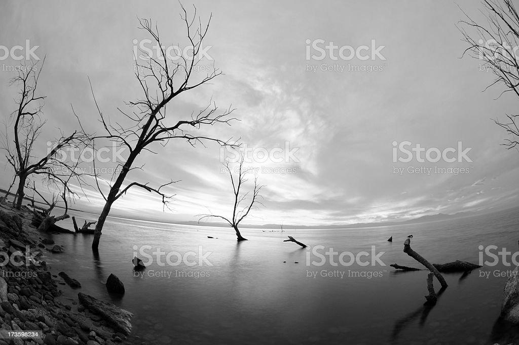 Salton Sea Distortion royalty-free stock photo
