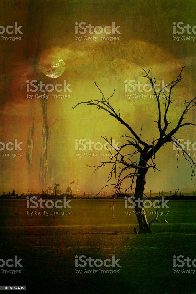 Salton Sea - Environmental Damage - fotografia de stock