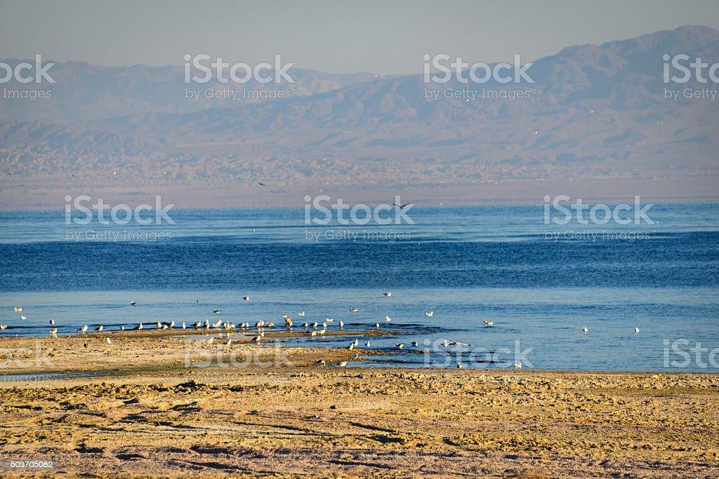 Salton Sea stock photo