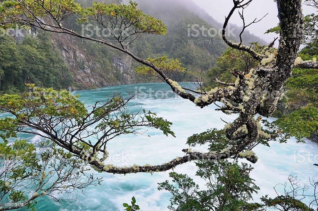 Saltos del Rio Petrohue. stock photo