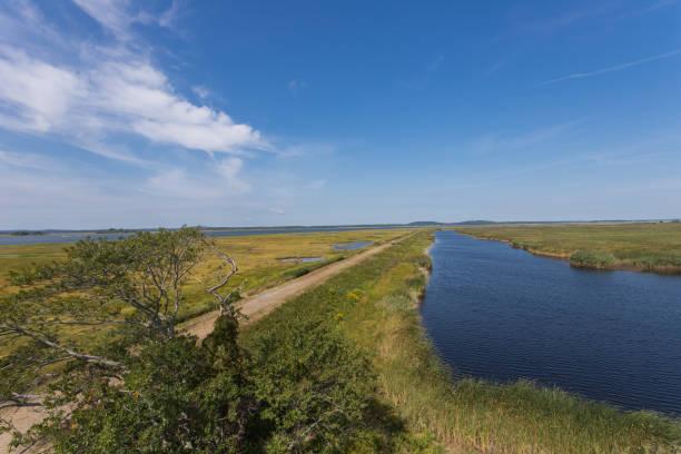 Saltwater Marsh at Parker River