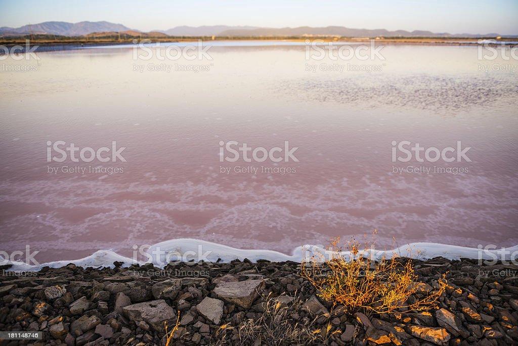 Saltworks Basin royalty-free stock photo