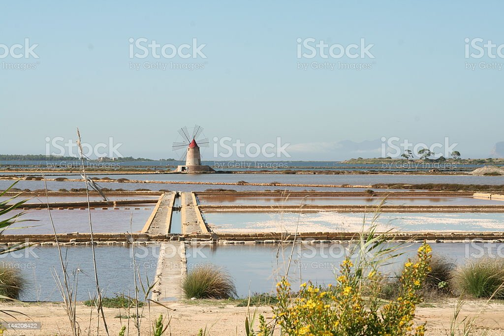 Salt-works in Trapani, with yellow flowers and a red windmill royalty-free stock photo