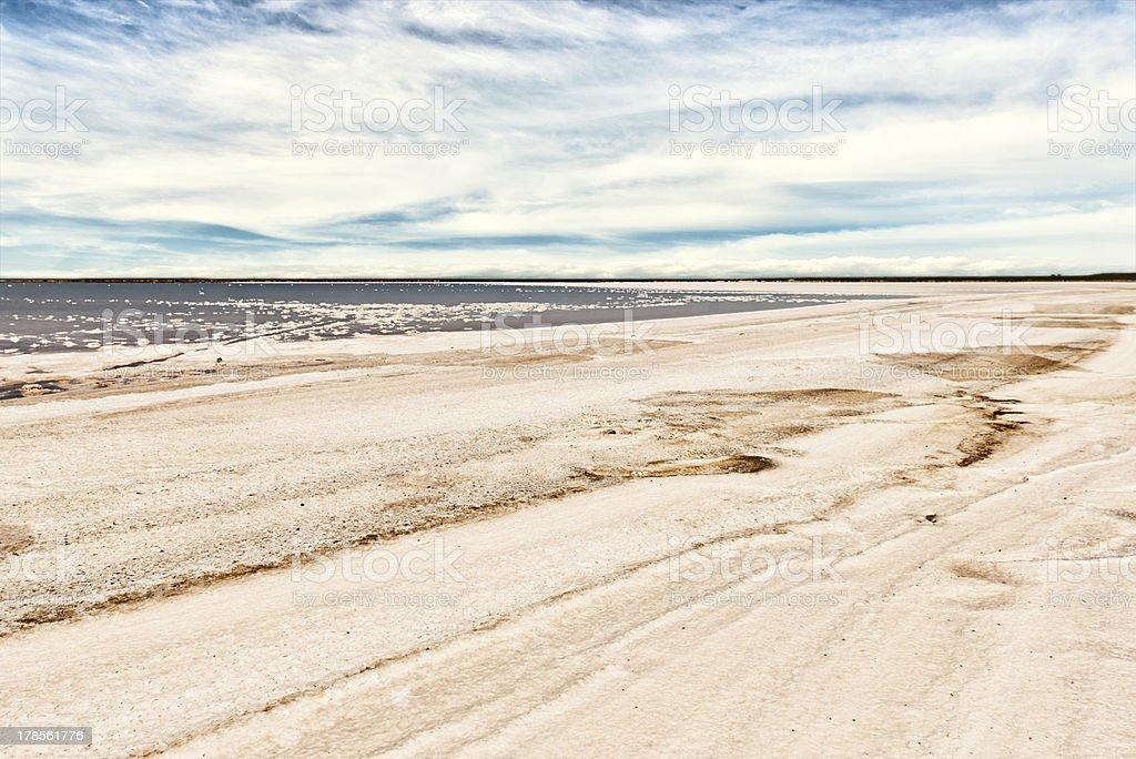 Salty shoreline royalty-free stock photo
