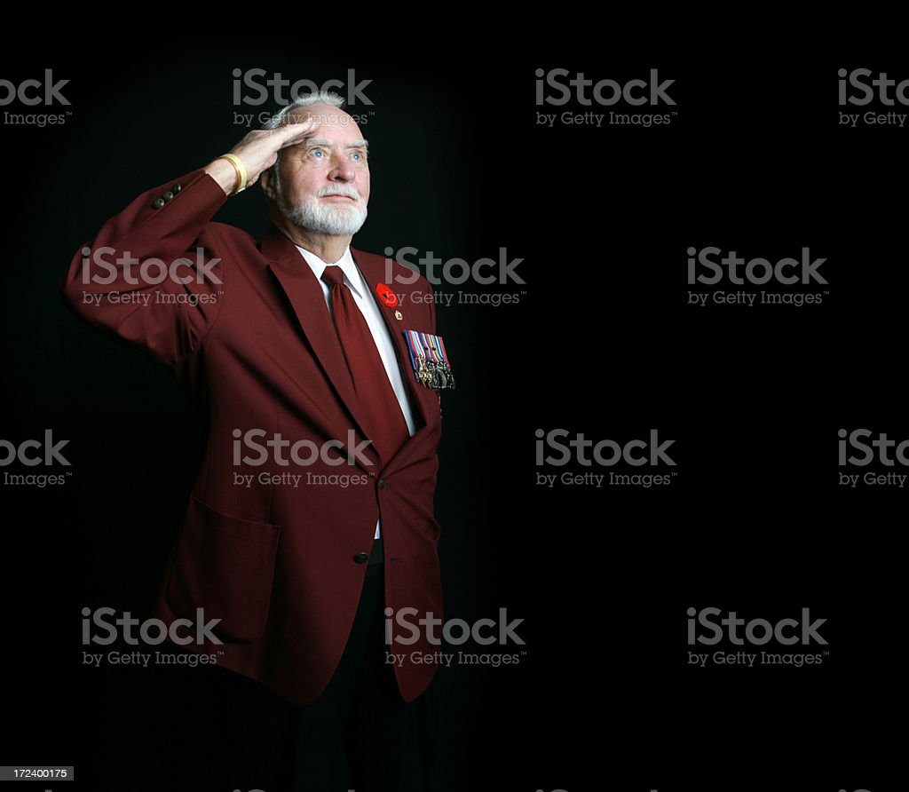 Saluting WWII Veteran stock photo