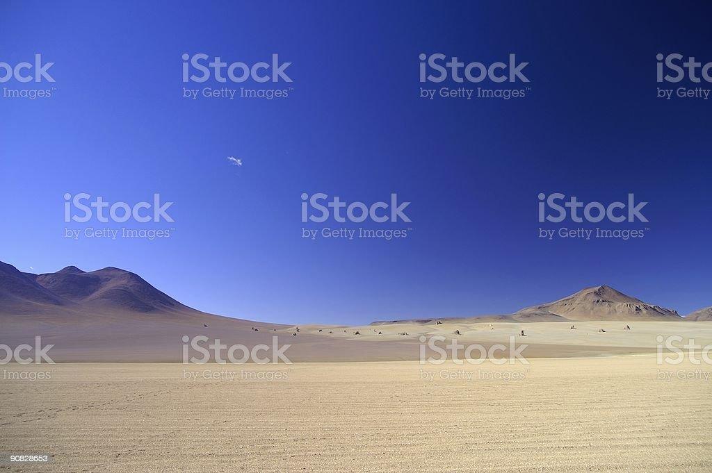 Salvador Dali Desert stock photo