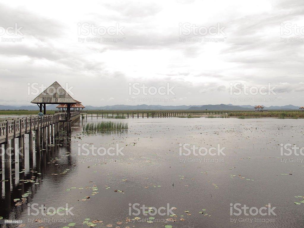 Sam obszar zainteresowania Yod National Park, Prachuap Khiri Khan, Tajlandia zbiór zdjęć royalty-free