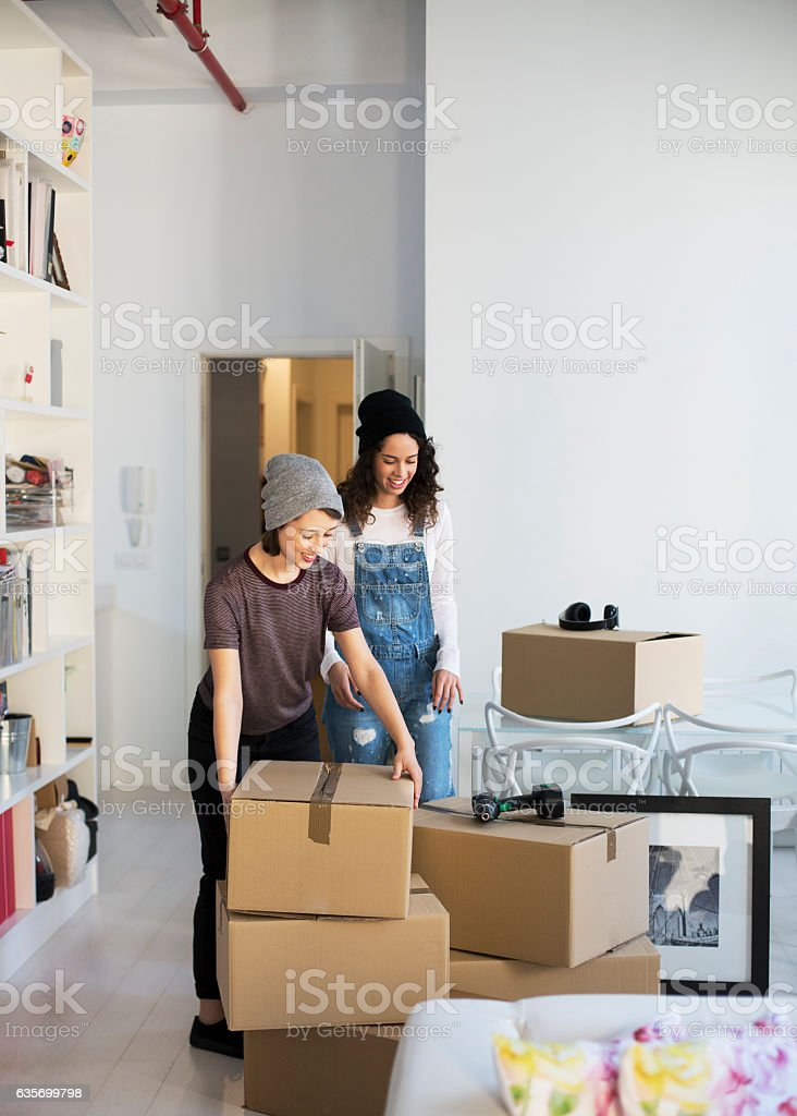 Same sex couple moving home royalty-free stock photo