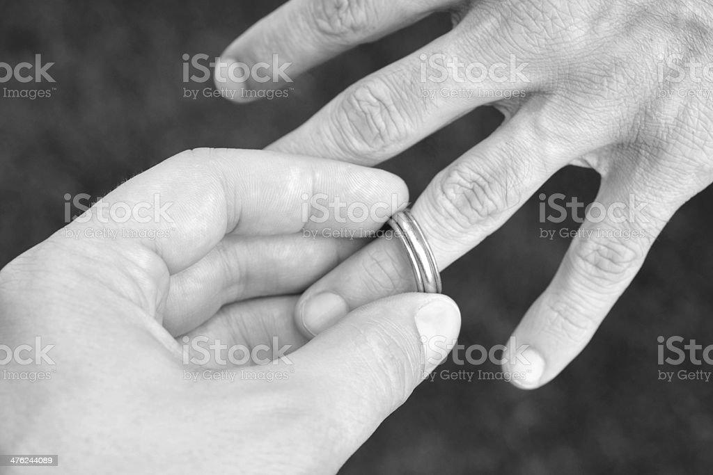 Same Sex Marriage royalty-free stock photo