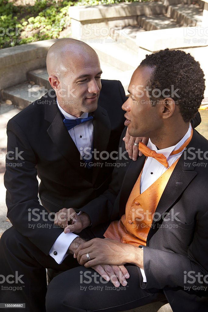 Same-Sex Marriage royalty-free stock photo