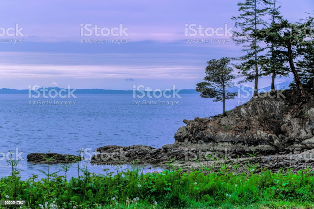 Samish Bay with San Juan Islands Background zbiór zdjęć royalty-free