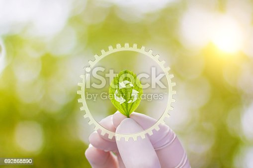 istock A sample of the plant in the hand . 692868890