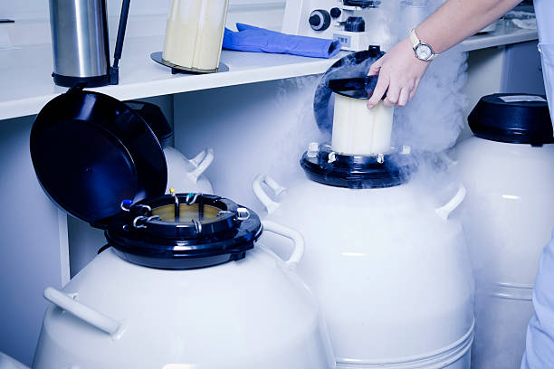 Sample Storage in test-tube laboratory  liquid nitrogen stock pictures, royalty-free photos & images