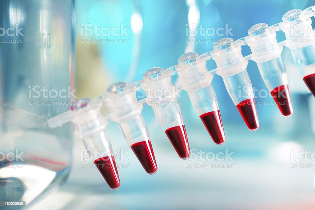 DNA samples in disposable plastic tubes for PCR analysis stock photo
