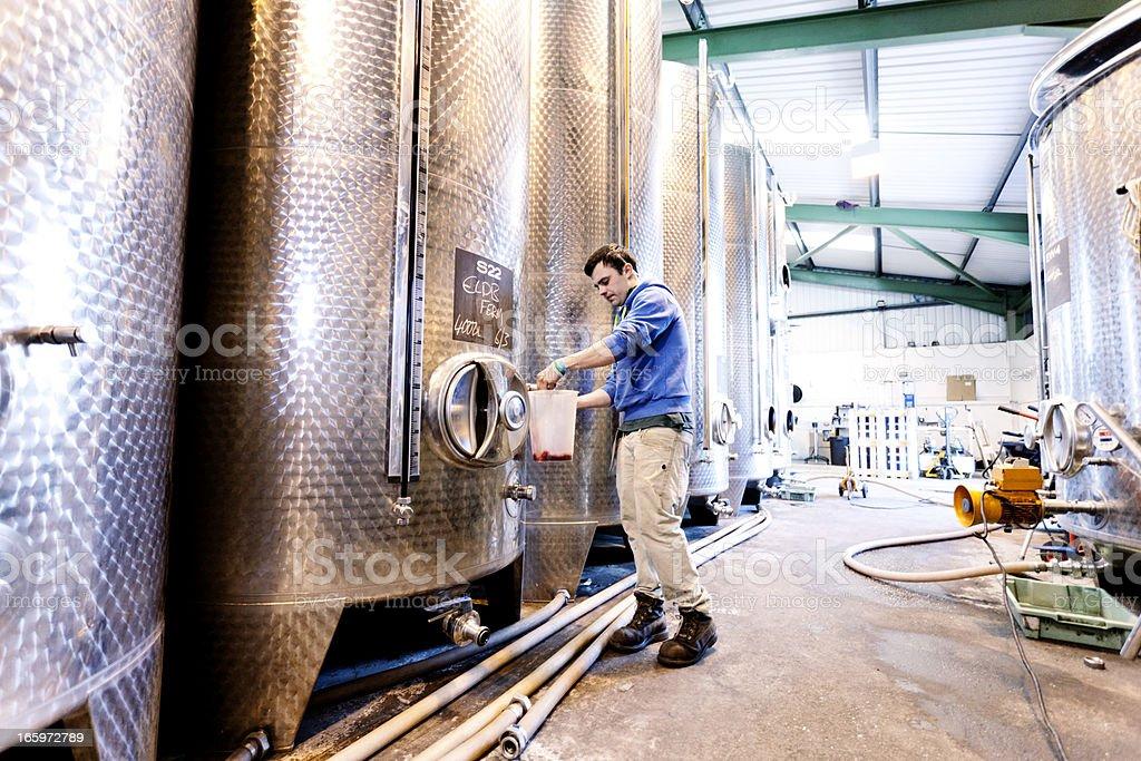 Sampling fermentation tanks stock photo