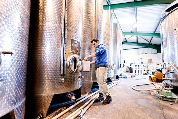 sampling fermentation tanks - brewery tanks stock pictures, royalty-free photos & images