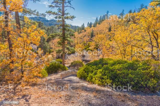 Photo of San Bernardino Mountains at Arrowbear in Autumn