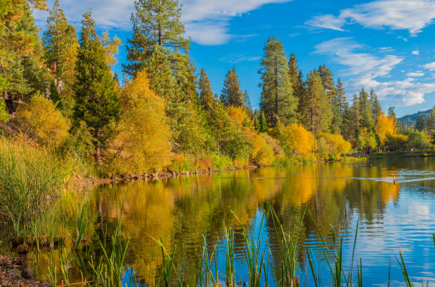 San Bernardino Mountains with autumn foliage at Grass Valley Lake , Ca mountain vacation;  mountain getaway; vacation location; quite getaway; mountain recreation; peaceful morning; relaxing location san bernardino california stock pictures, royalty-free photos & images