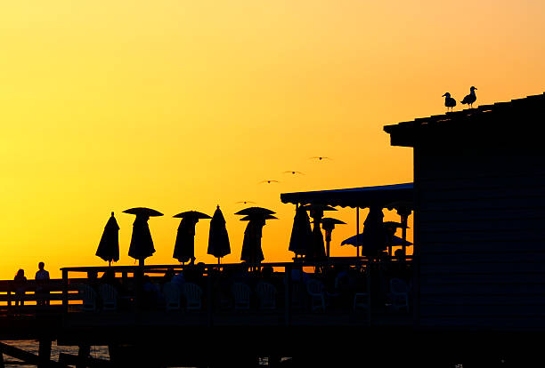 San Clemente Pier Silhouette with Pelicans stock photo