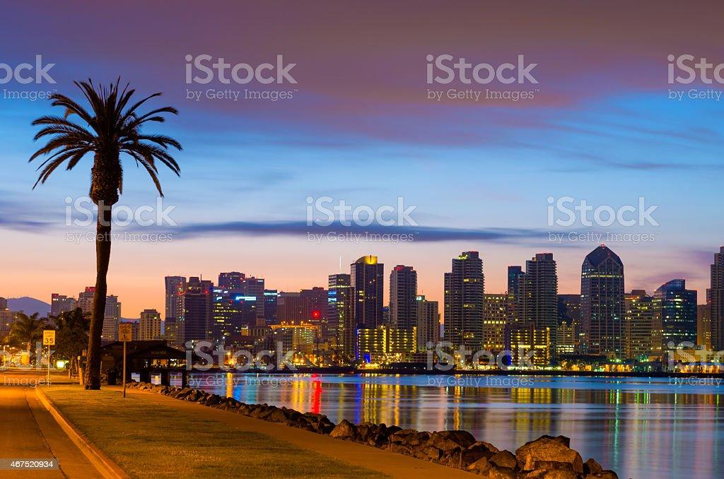 San Diego downtown skyline and palm tree at dawn stock photo