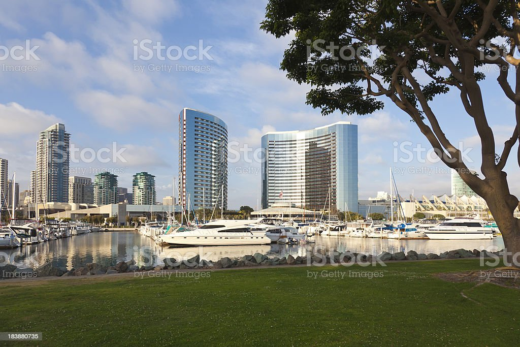 San Diego Marina and City View from Park royalty-free stock photo