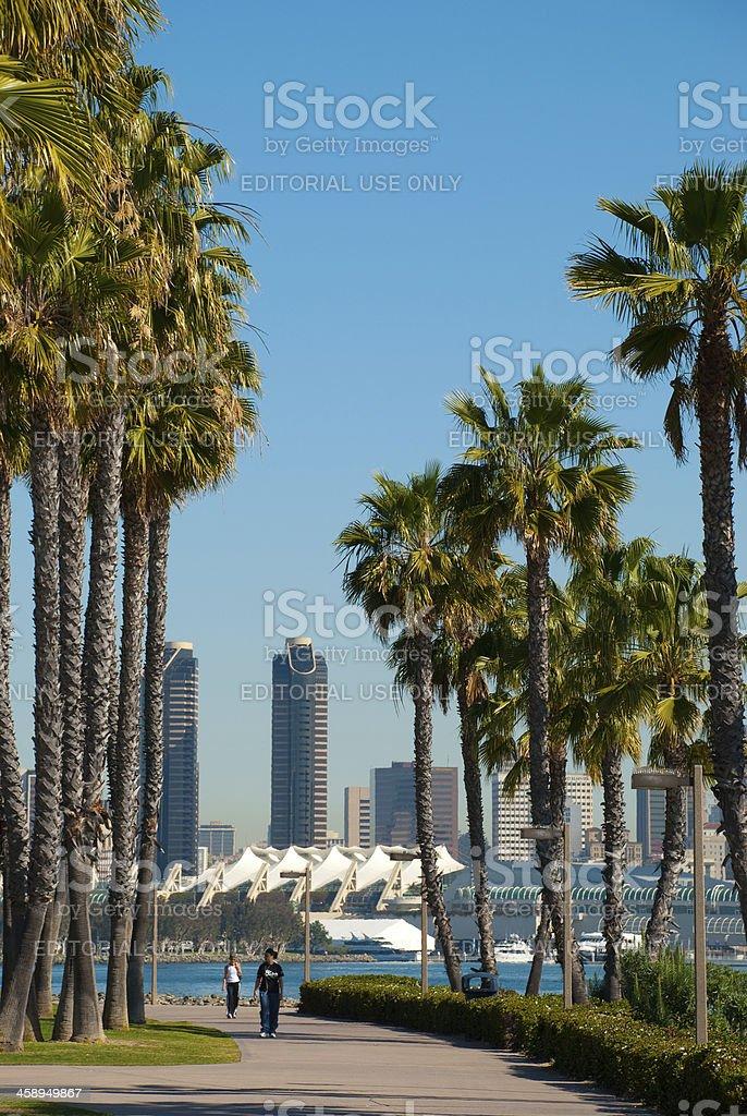 San Diego scene with palm trees stock photo