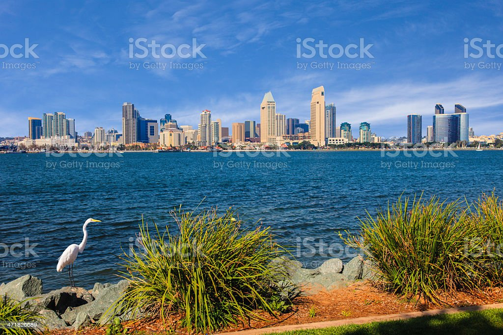 San Diego skyline and Bay, California royalty-free stock photo