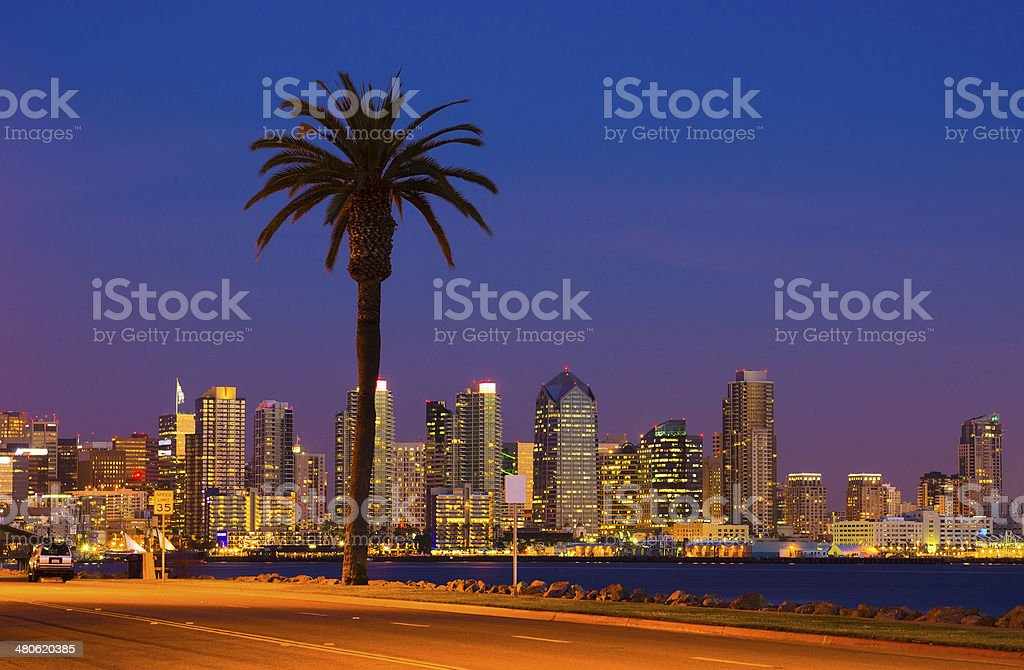 San Diego skyline and palm tree at dusk stock photo