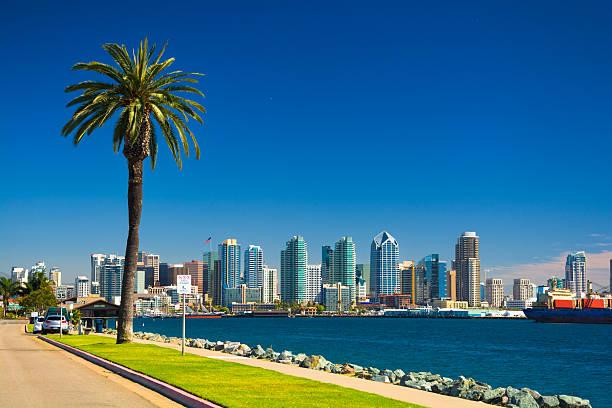 San Diego skyline with Palm Tree, Bay, and Blue Sky stock photo