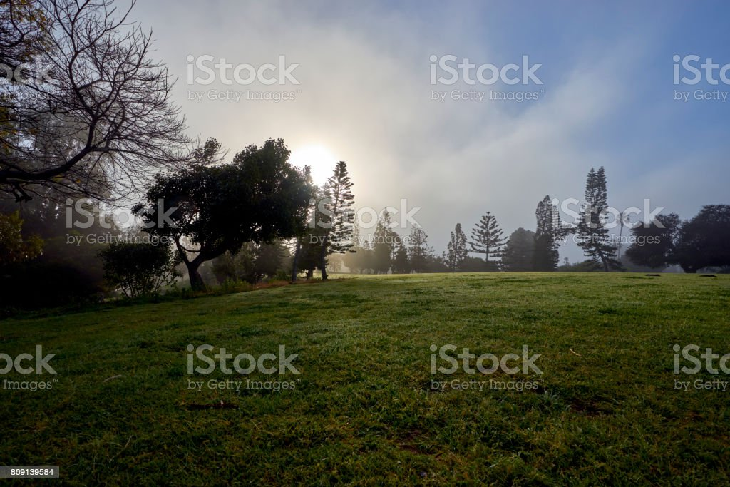 San Diego's famous Balboa park and its beautiful vegetation during the morning haze stock photo