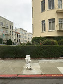 Picture of the streets of San Francisco. The city offers a variety of architectural designs through its various apartment structures.  A fire hydrant stands at the ready to offer help if the need arises.