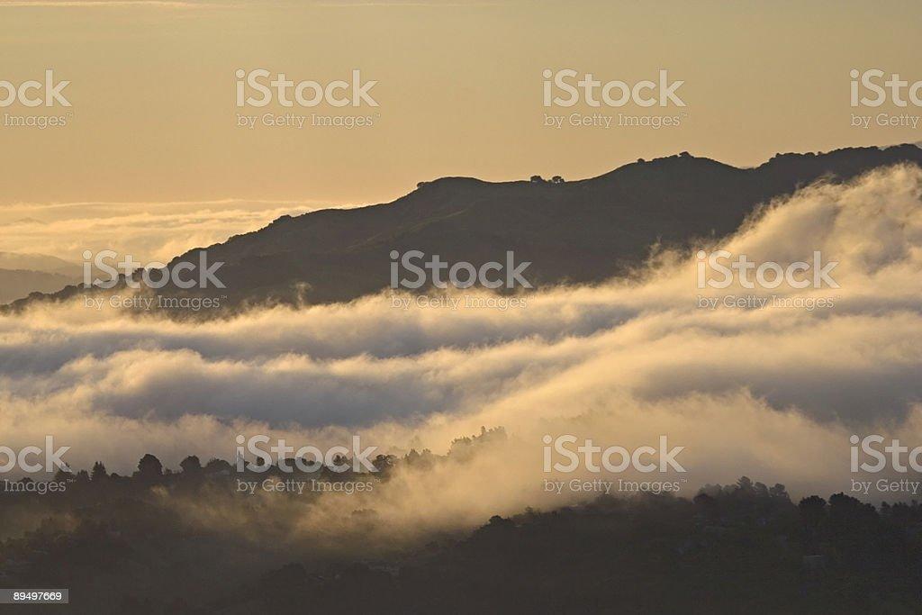 Area di San Francisco: Baia di East Hills nella nebbia di mattina foto stock royalty-free