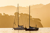 The Sausalito Marina in San Francisco California